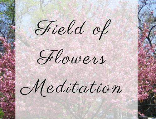 Field of Flowers Meditation